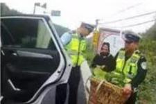 贵州都市报公号:交警小哥,你在雨中买菜的样子真帅
